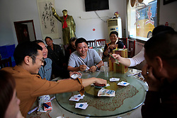 Chinese visitors play a card game in a restaurant where a Mao Zedong statue overlooks them in the background in Shaoshan, Hunan Province in central China, 28 April 2016. Shaoshan is the hometown of former Communist leader Mao Zedong, popularly known as Chairman Mao. Thousands of visitors descend on this small Chinese town burrowed in the hills of Central China's Hunan province to pay homage to the great helmsman everyday. It is one of the core sites of the 'Red Tourism' industry, where communist party cadres and ordinary Chinese tourists alike seek to relive the experiences and rekindle the spirit of the revolutionaries.
