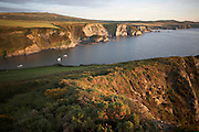 The rocky coastline is at Dinas Head in Pembrokeshire, Wales. Seen from high up on the cliff top as a late sun plays across the grasses and sandstone headland. At 463 feet in height, the Dinas Head cliffs provide excellent views across Fishguard Bay to the south and Newport Bay to the north. The Pembrokeshire Coast Path is the first National Trail in Wales. Opened in 1970, the path is almost entirely contained within the boundaries of the Pembrokeshire Coast National Park that takes in 17 Sites of Scientific Interest (SSSI), two nature reserves, and Wales' only marine nature reserve. The cliff tops offer wonderful expanses of wildflowers in Spring (April and May are best). Wide variety of birds nest along the cliffs, and grey seals can often be seen in the water below.