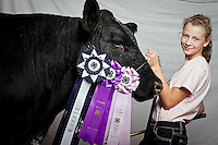 "JEROME A. POLLOS/Press..Anne Womochil was awarded a grand champion award for market in her first year showing a steer. Womochil, 12, didn't even expect a blue ribbon, let alone a champion placing for her Angus Maine Angou named Prince. ""It's a lot of work every day and even more once we go to show. I was surprised."""