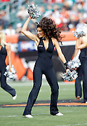 A Cincinnati Bengals Ben-Gal cheerleader waves her pom poms and does a dance routine during the NFL week 8 football game against the Miami Dolphins on Sunday, October 31, 2010 in Cincinnati, Ohio. The Dolphins won the game 22-14. (©Paul Anthony Spinelli)