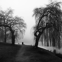 Two silhouetted people walking through fog and weeping willow trees along waters edge