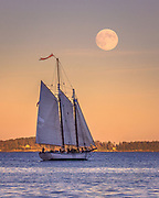 One of Camden's historic windjammers, the Appledore, sails across Penobscot Bay under a full 'Harvest' Moon.