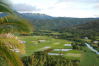 Hawaii, Princeville - agricultural land culture