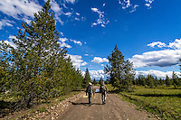 Two fly fisherman walk the old dirt road back to the car near the Madison River in Montana.