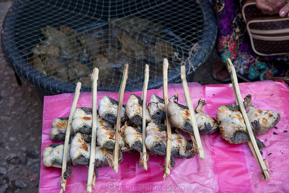 Luang Prabang, Laos. Morning food market. Roasted frogs.