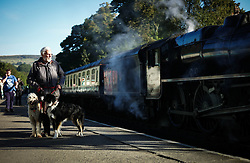 © Licensed to London News Pictures. <br /> 01/10/2016. <br /> Grosmont, UK.  <br /> <br /> A man stands with his dogs on the platform at Grosmont railway station during the North Yorkshire Moors Railway Autumn Steam Weekend. <br /> The hugely popular railway line runs a service between Pickering and Whitby through the picturesque North yorkshire countryside and attracts thousands of visitors each year. <br /> <br /> Photo credit: Ian Forsyth/LNP