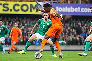 Netherlands forward Quincy Promes (11) plays the ball across goal faced by Northern Ireland defender Jonny Evans (5) during the UEFA European 2020 Qualifier match between Northern Ireland and Netherlands at National Football Stadium, Windsor Park, Northern Ireland on 16 November 2019.