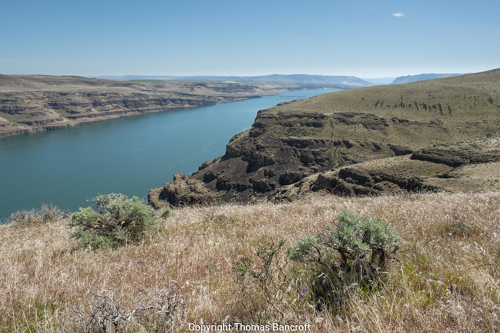 The Columbia River along the edge of Ginkgo Petrified Forest State Park.