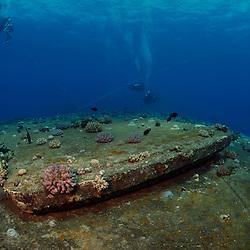 Dive Spot: Salem Express
