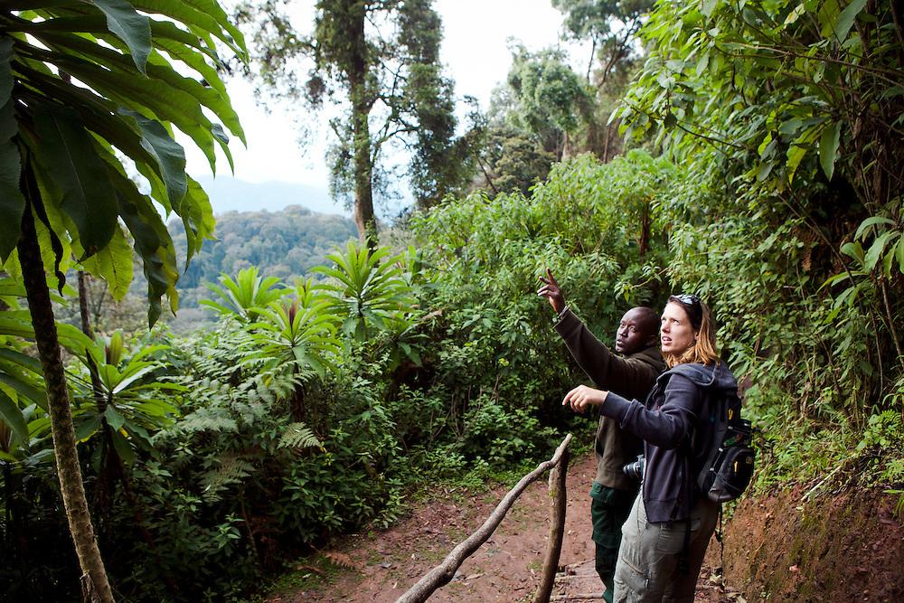 Trekking in the Nyungwe Forest, Rwanda