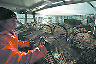 Fisherman Davie Smith, working aboard his vessel My Amber stacking newly-hauled creels, as he fishes for prawns off Scotland's west coast in a marine 'box' in the inner sound of Rona which restricts entry to large trawlers looking for white fish and allows around 16 creelers unrestricted fishing..