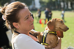 MPs and members of the House of Lords bring their pooches to Parliament as they compete to be crowned The Dogs' Trust and The Kennel Club's Westminster Dog Of The Year. PICTURED: Liz Saville-Roberts MP (Dwyfor) and rescue daschund Fiona.