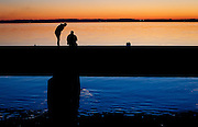 Fishermen chatting along the East side of Lake Kegonsa, Saturday, October 11, 2014.