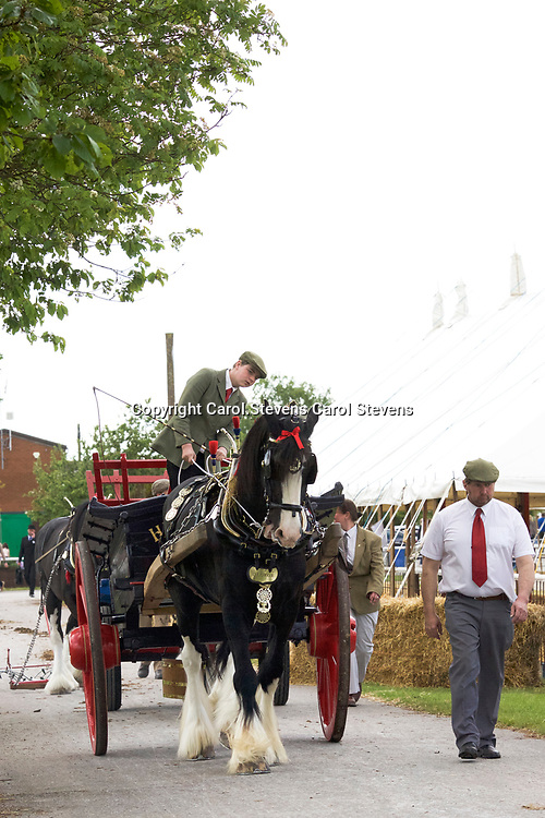 Notts County Show 2017<br /> Agricultural Turnouts