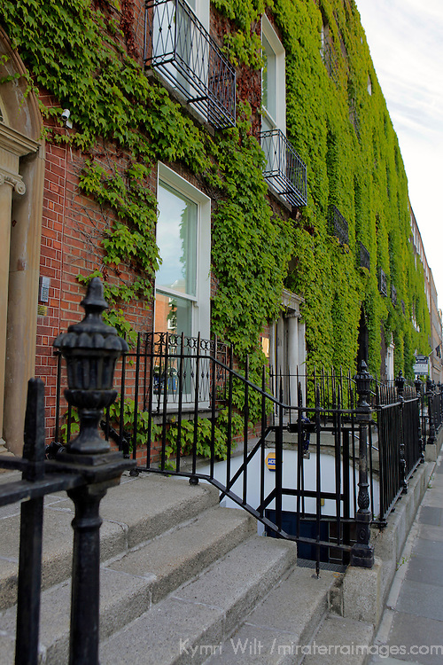 Europe, Ireland, Dublin. Ivy growing on brick building of Dublin neighborhood.