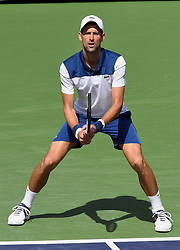 March 11, 2018 - Indian Wells, CA, U.S. - INDIAN WELLS, CA - MARCH 11: Novak Djokovic (SRB) waits for a serve in the second set of a match played at the BNP Paribas Open on March 11, 2018 at the Indian Wells Tennis Garden in Indian Wells, CA. (Photo by John Cordes/Icon Sportswire) (Credit Image: © John Cordes/Icon SMI via ZUMA Press)