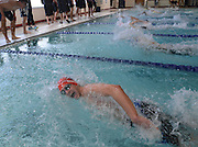 Lincoln-Sudbury Regional High School sophomore Nick Kambanis swims the 100 yard freestyle during the DCL meet at Atkinson Pool in Sudbury, Jan. 31, 2015.   (Wicked Local Photo/James Jesson)