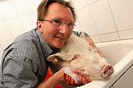 """Domestic pig Rudi is soaped in the bath of the Dutch physiotherapist Daan Vermeulen. He and his family live together with two pigs, who are alternately in the garden or house. From time to time they are washed in the bathtub because he uses these pigs as swine therapy in senior homes, which was not the reason, so far, to live closely together with pigs. His answer to the question whether he was fond of animals, """"I am fond of people - I love animals differently - I appreciate them."""" Borken, Germany / Hausschwein Rudi wird in der Badewanne von dem hollaendischen Physiotherapeuten Daan Vermeulen eingeseift. Er und seine Familie leben mit zwei Schweinen zusammen, die sich abwechselnd in Garten oder Haus aufhalten. Von Zeit zu Zeit werden sie in der Badewanne gewaschen, da er diese Schweine auch als Therapieschweine in Altersheimen einsetzt, was aber nicht den Ausschlag gab, so eng mit Schweinen zusammen zu leben. Seine Antwort auf die Frage ob er tierlieb sei: """"Ich habe Menschen lieb - ich habe Tiere anders lieb - ich schaetze sie"""". Borken, Deutschland"""
