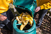 Young school children empty banana skins from their food waste box into a composter outdoors at their school, Hampshire, UK.