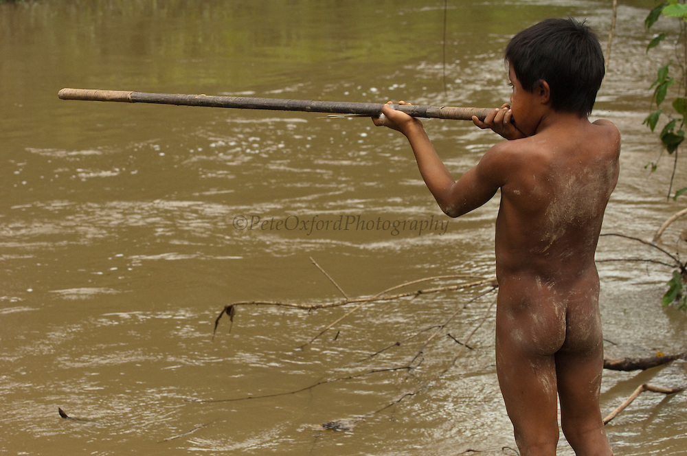 Huaorani Indian boy with his blowgun. Gabaro Community. Yasuni National Park.<br /> Amazon rainforest, ECUADOR.  South America<br /> They learn to hunt from an early age by using shorter blowguns, lances and spears.<br /> This Indian tribe were basically uncontacted until 1956 when missionaries from the Summer Institute of Linguistics made contact with them. However there are still some groups from the tribe that remain uncontacted.  They are known as the Tagaeri &amp; Taromenani. Traditionally these Indians were very hostile and killed many people who tried to enter into their territory. Their territory is in the Yasuni National Park which is now also being exploited for oil.
