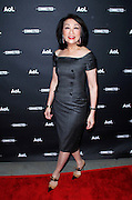 Connie Chung attends the 2014 AOL Newfront at the Duggal Greenhouse in the Brooklyn Navy Yard in Brooklyn, New York in April 29, 2014.