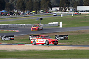 Scott McLaughlin (Shell DJR Penske Ford) leading Fabian Coulthard. Winton Truck Assist SuperSprint -2019 Virgin Australia Supercars Championship Round 6. Winton Motor Raceway, Victoria on Sunday 26 May 2019. Photo Clay Cross / photosport.nz