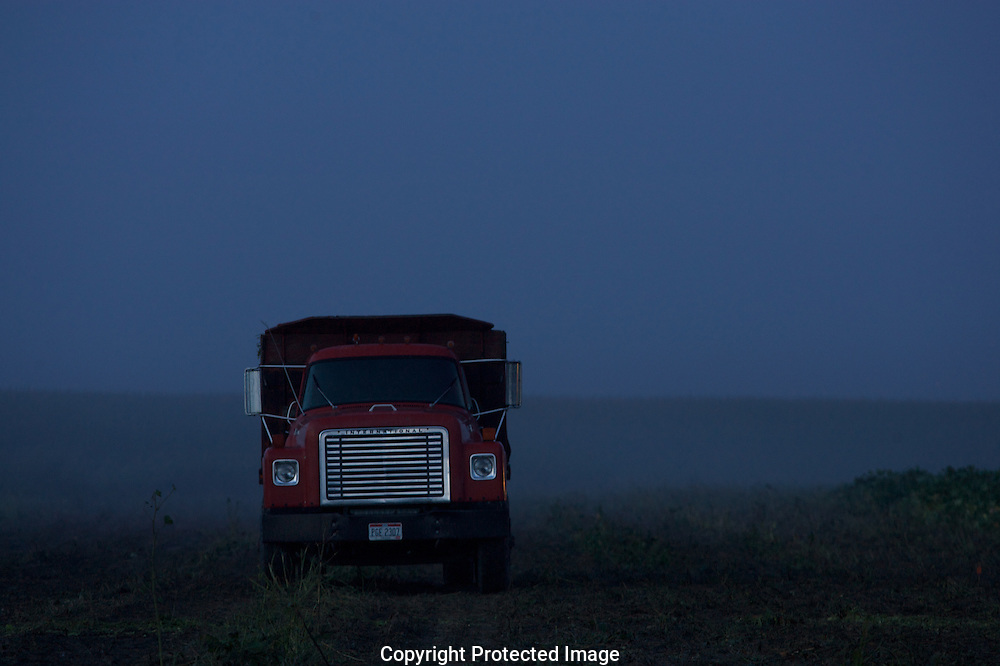 A truck waits in a field of fog to be filled with beans...Edamame harvest at the Fry Farm in Tiffin, Ohio.Charles C Fry.American Sweet Bean Company