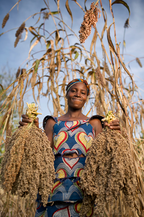 Rachelle Coulibaly<br /> Djenebou Dembele (the girl in blue dress hold sorghum) harvesting sorghum in the Wakoro region of Mali. Sorghum grain heads are collected after the tall stalks have been knocked over, then taken to be threshed and winnowed.