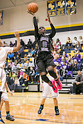 Lashann Higgs drives around Orianna Shillow Friday night at Stony Point.  The Raiders dominated tamed the Tigers 75-37.  (LOURDES M SHOAF for Round Rock Leader.)