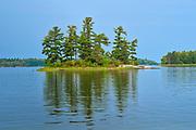 White pine (Pinus strobus) trees on island in Lake of the Woods, a few kilometers Northeast of Deadbroke Island<br />Kenora<br />Ontario<br />Canada