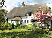 Pretty thatched country cottage and garden, Allington, Wiltshire, England, UK