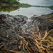Water Polluted Due to Oil Spillage by Princess-Ella Nwiyee, Rivers State, 2017