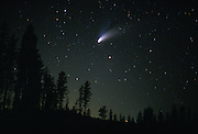 Comet hale-Bopp in the northern sky. Mount hood National Forest, Oregon. Spring 1997