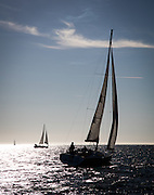 Sailboats on San Francisco Bay