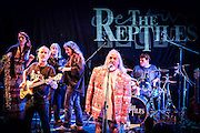 © Stephen Simpson. The Reptiles perform at  Kingston College on the evening of 26th November 2016. Photo credit : Stephen Simpson