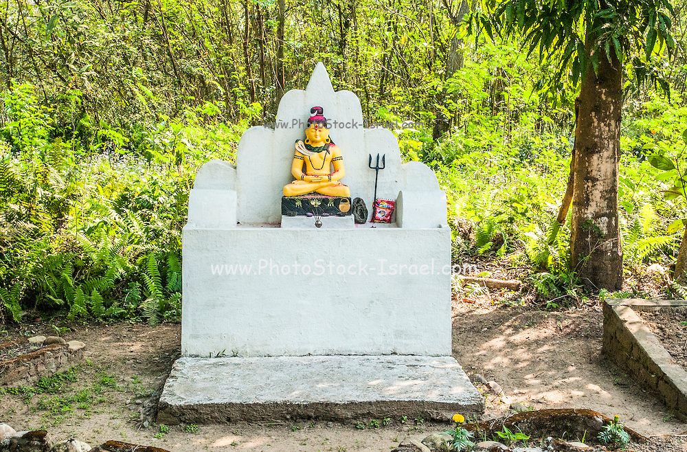 Small Shiva shrine. Photographed in Chitwan national park, Nepal