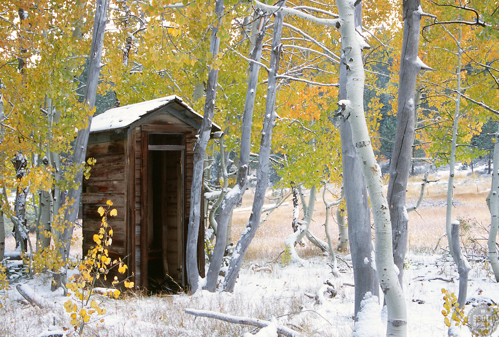 &quot;Outhouse near Brockway Summit&quot;- This old shack was photographed along Hwy 267 near Brockway Summit, CA. <br />