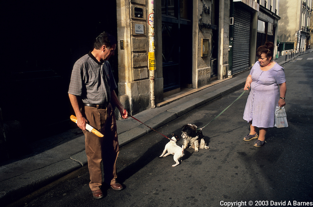 Walkling the dog, Paris, France