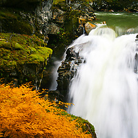 Rivers/Lakes/Streams