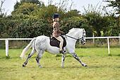 Class 30 - Riding Club Horse & Pony