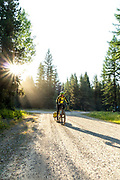 BC00652-00...MONTANA - Vicky Spring begins the climb on Foresr Road 115 to Red Meadows Pass along the Great Divide Mountain Bike Ride.