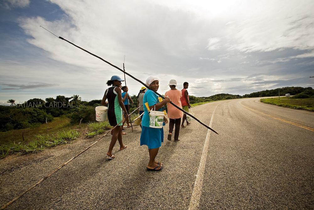 Catadoras caminham longos trechos, equipadas com baldes e varas com um gancho na ponta, para chegarem a áreas mais fartas ou não cercadas..© Tatiana Cardeal.