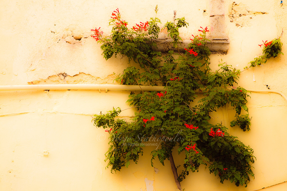 Arxanes, Crete