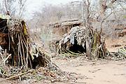 Africa, Tanzania, Lake Eyasi, huts of leaves of the Hadza tribe a small tribe of hunter gatherers AKA Hadzabe Tribe