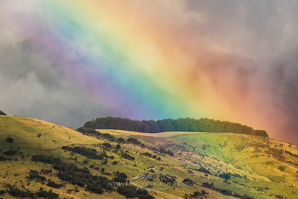 On the outskirts of Te Anau, an intense rainbow touches down on the foothills of the Takatimu Mountains.  Southland, New Zealand.