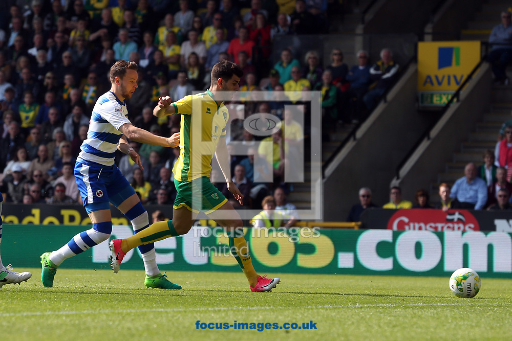 Nelson Oliveira of Norwich is fouled by Chris Gunter of Reading and a penalty is awarded by Referee James Liningtonduring the Sky Bet Championship match at Carrow Road, Norwich<br /> Picture by Paul Chesterton/Focus Images Ltd +44 7904 640267<br /> 08/04/2017