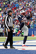 An official looks on as New England Patriots running back LeGarrette Blount (29) celebrates after running for a one yard touchdown that gives the Patriots a 38-17 third quarter lead during the 2016 NFL week 8 regular season football game against the Buffalo Bills on Sunday, Oct. 30, 2016 in Orchard Park, N.Y. The Patriots won the game 41-25. (©Paul Anthony Spinelli)