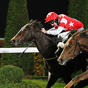 Lucky Royale and Adam Kirby winning the 5.10 race