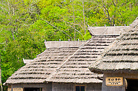 Traditional thatched huts of the Ainu people.