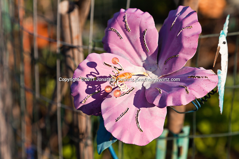 A colorful artificial flower in an outdoor garden. WATERMARKS WILL NOT APPEAR ON PRINTS OR LICENSED IMAGES.